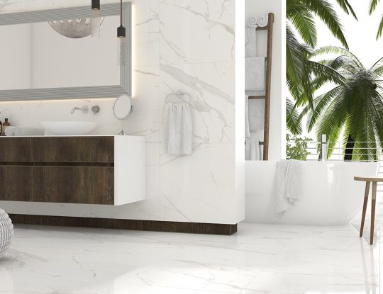 ROYAL MARBLE 24x24 Polished Room Scene
