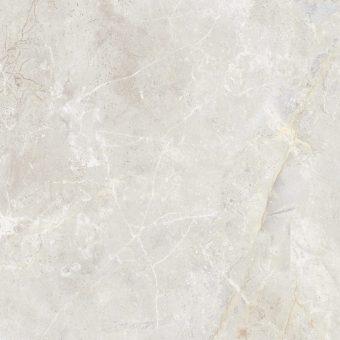 amazon bone 30x60 (1)